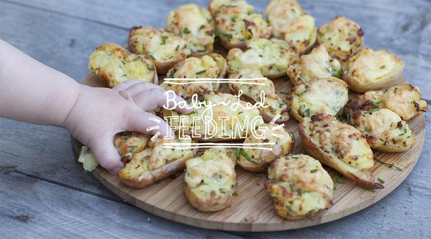 Baby Led Feeding Branding and website for new food startup Irish company Irish Food Blogger Featured Image.