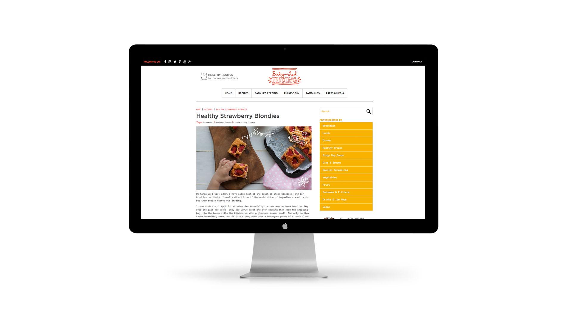 Baby Led Feeding Branding and website for new food startup Irish company Recipe Layout.