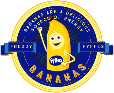 Freddy Fyffes Website Design Homepage Logo.