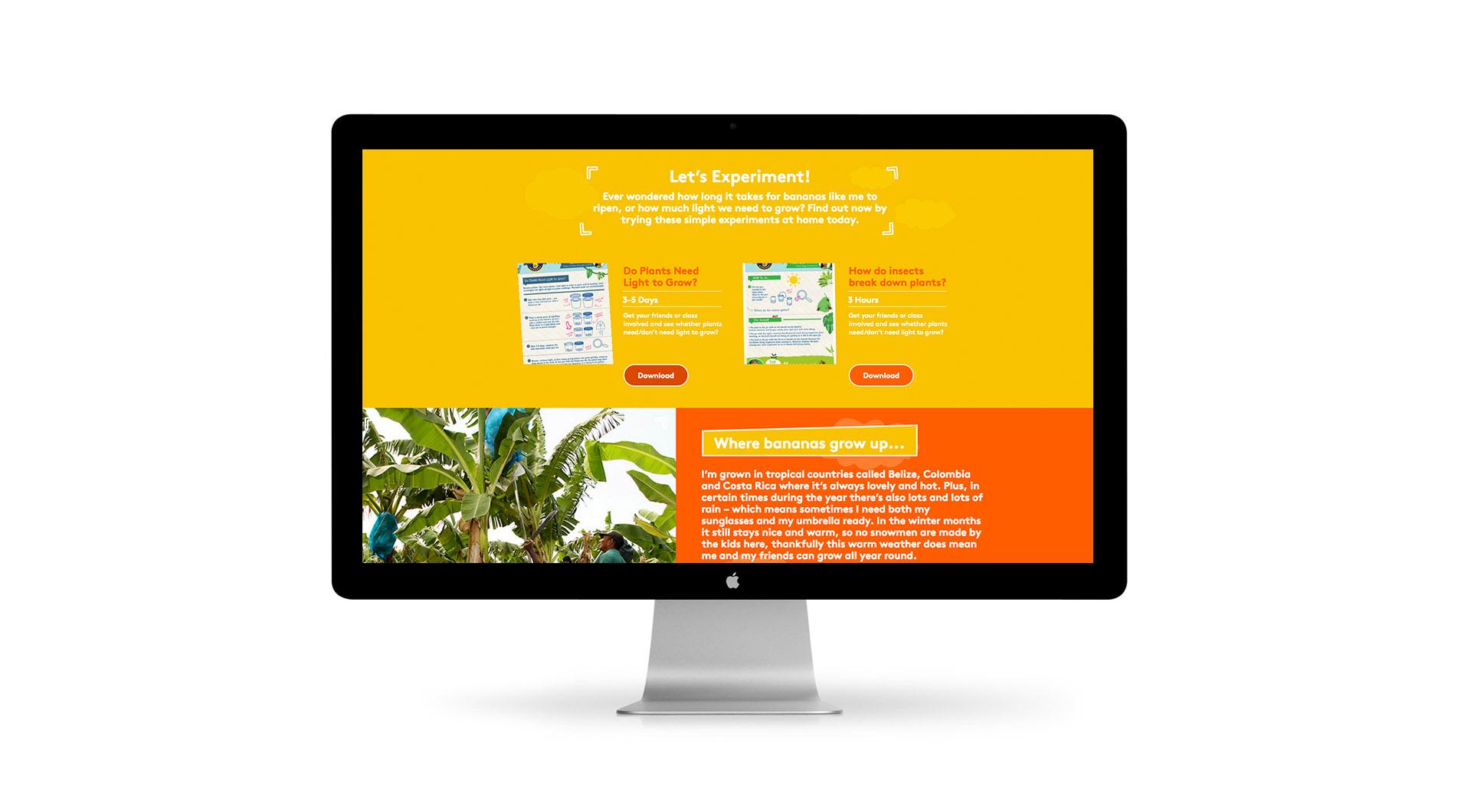 Freddy Fyffes Website Design Freddy Fyffes Website Lets Experiment Website Design.