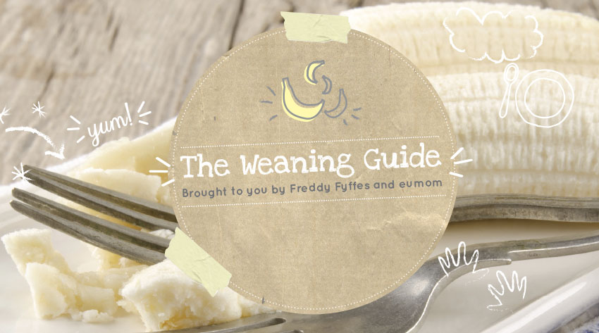 Fyffes and Eumom Weaning Booklet Featured Image.