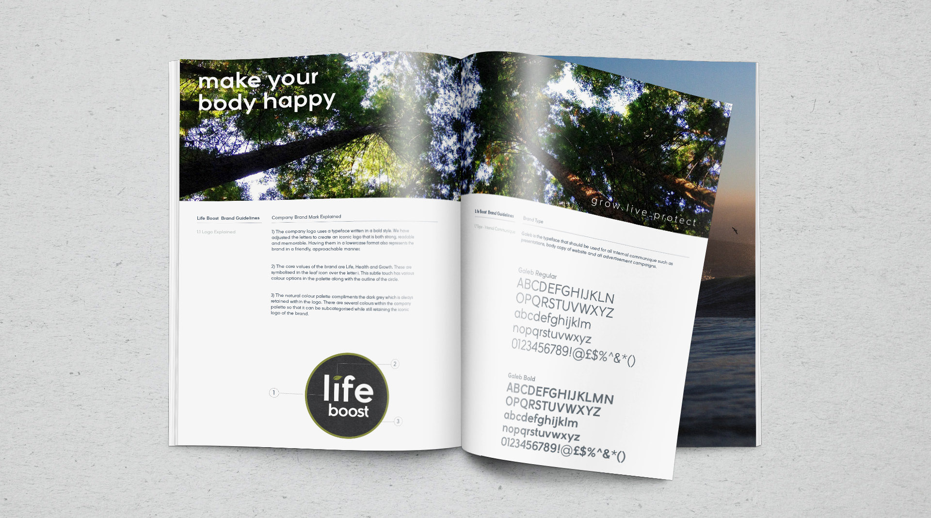 Life boost branding toolkit for vitamins and supplements