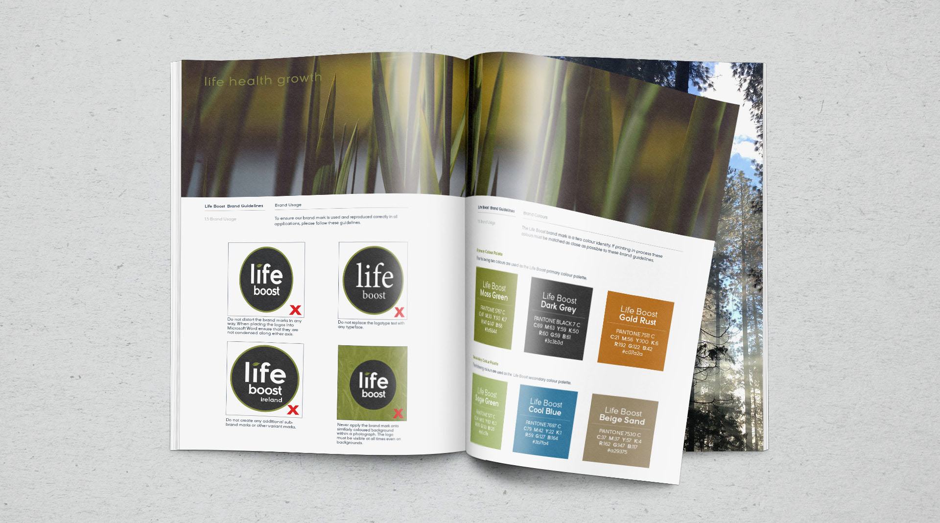 Life boost branding toolkit for vitamins and supplements.