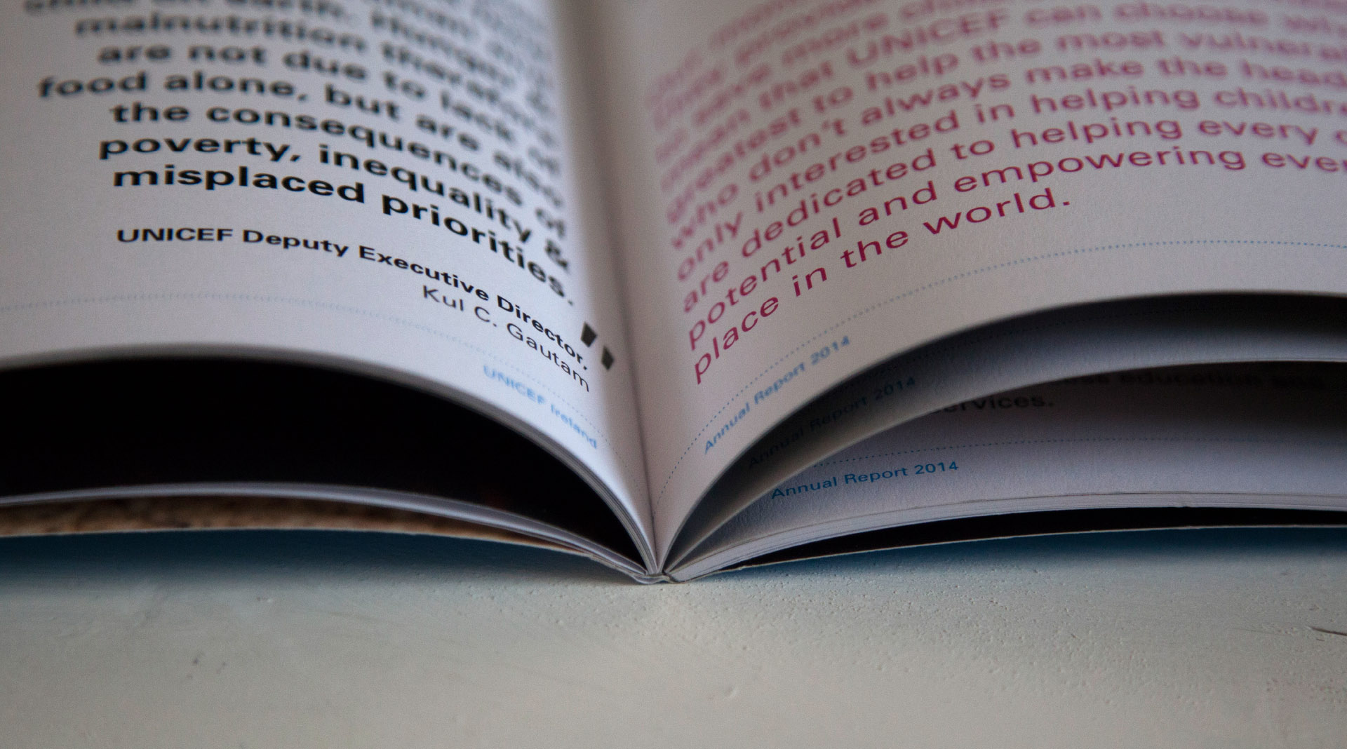 Unicef Annual Reports Book spine detail