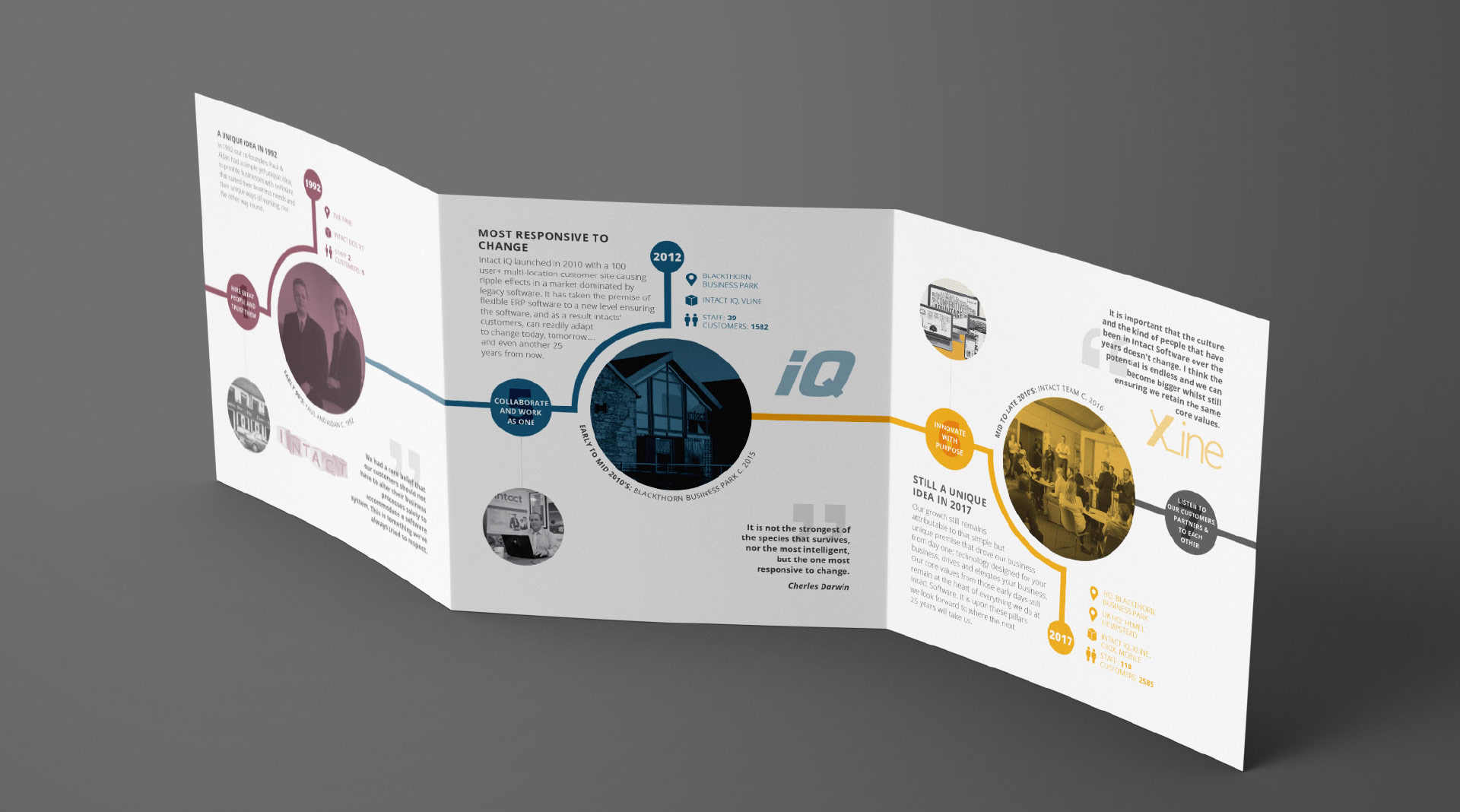 Intact 25 Years trifold brochure design.