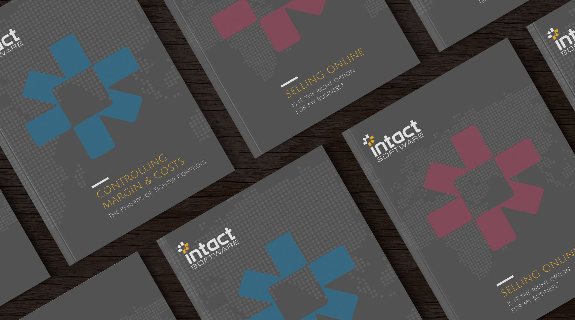 Intact Software Brochure Series.