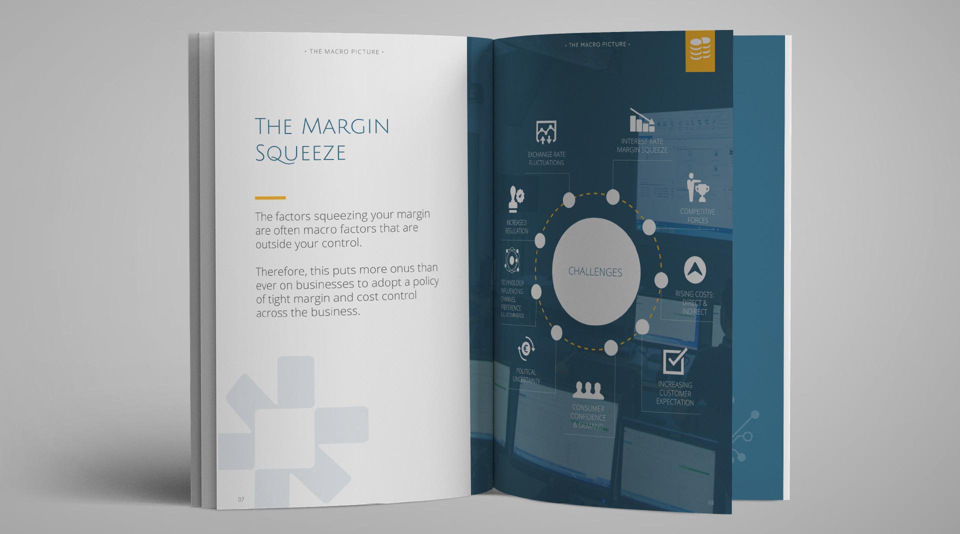 Intact Software Brochure Design