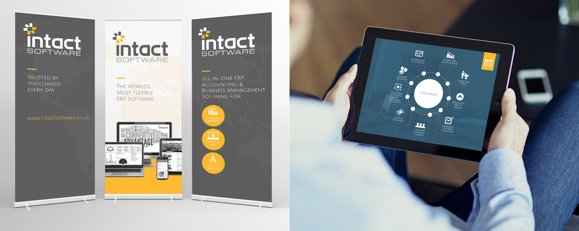 Intact Software Pull up stand and presentation design.